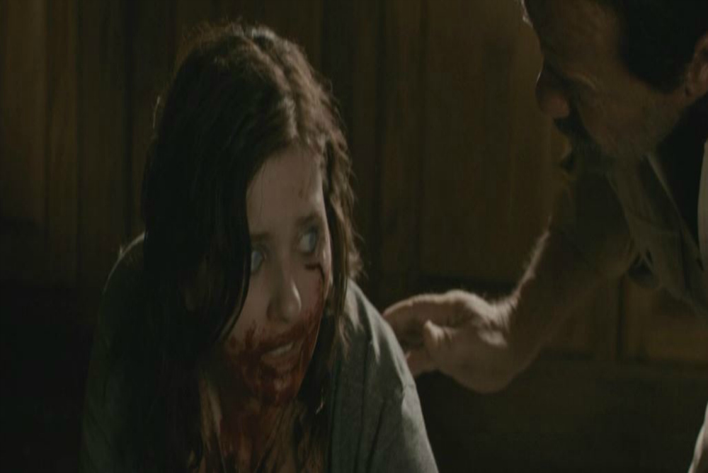 Fig. 4, Maggie, blood on face