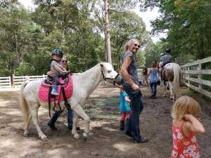 Pony Parties for Kids and Adults!