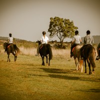School Group - Horse Riding