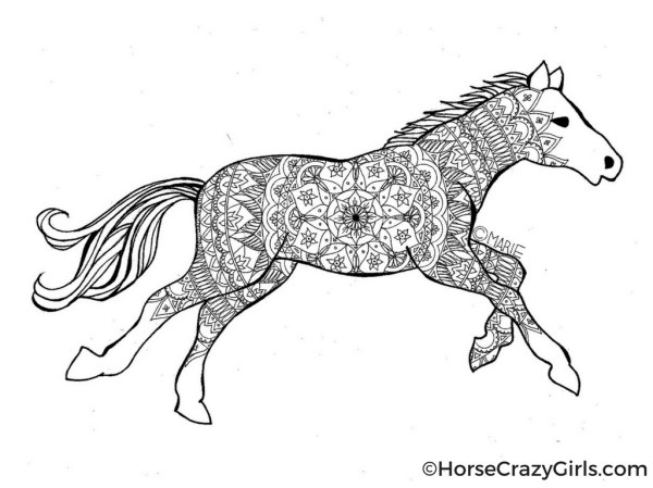 horse coloring pages # 4