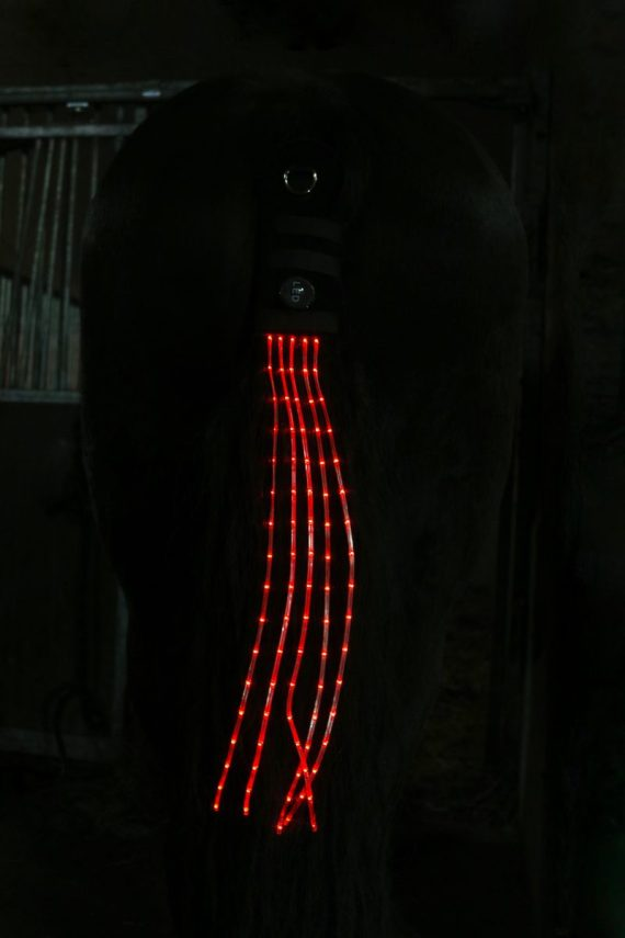 horse tail lights rood staartverlichting