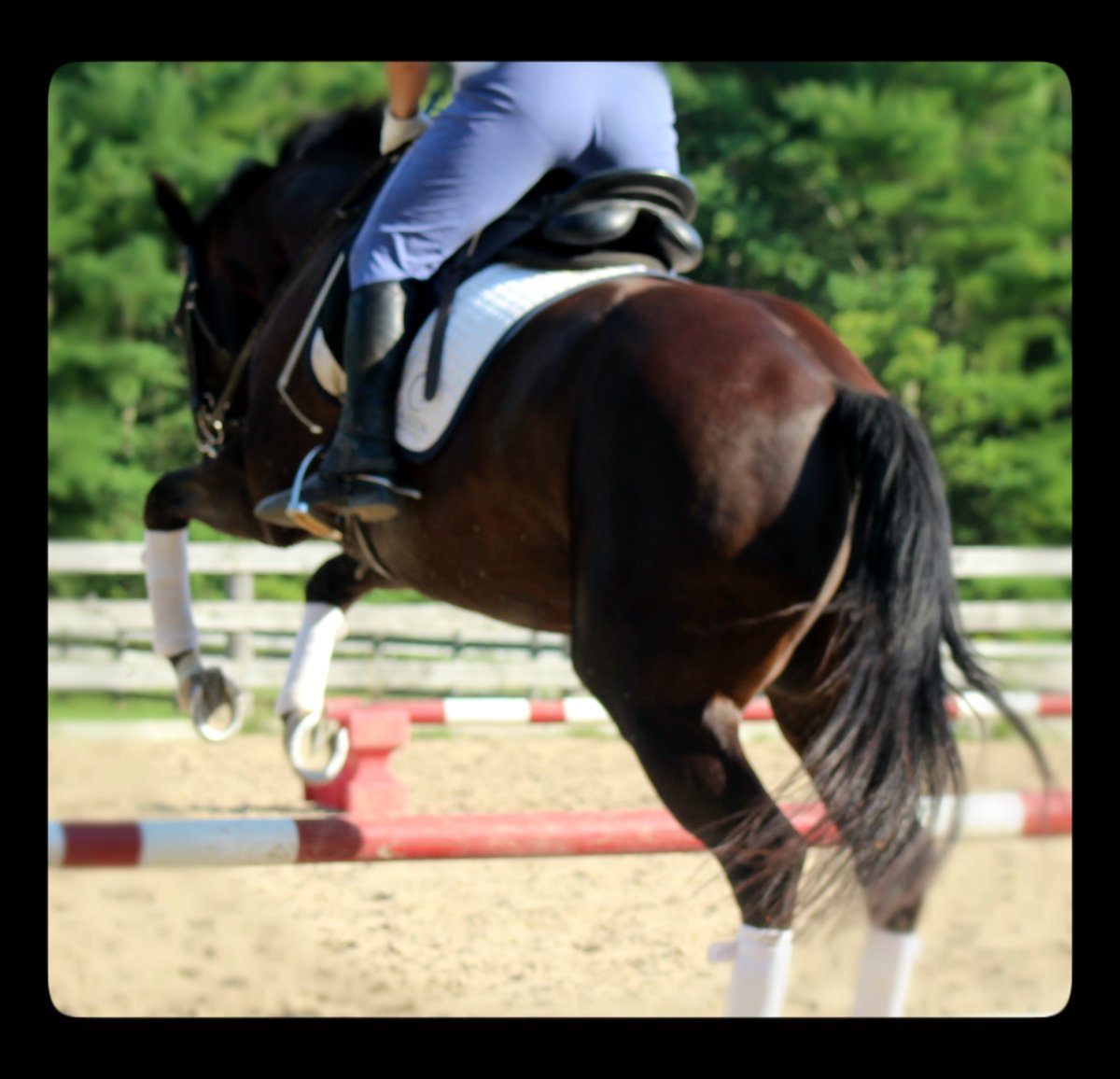 5 Ways to Amp Up Your Warm Up in Horse Riding