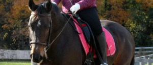 Goal Setting for Equestrians