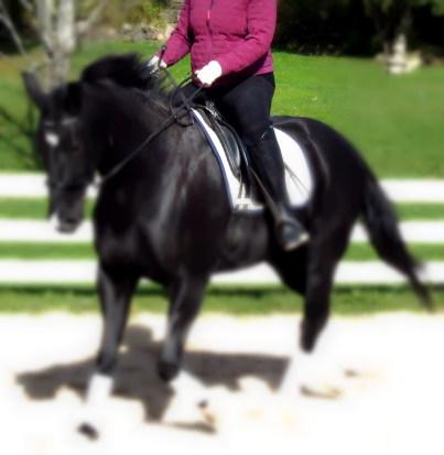 horse riding elbows