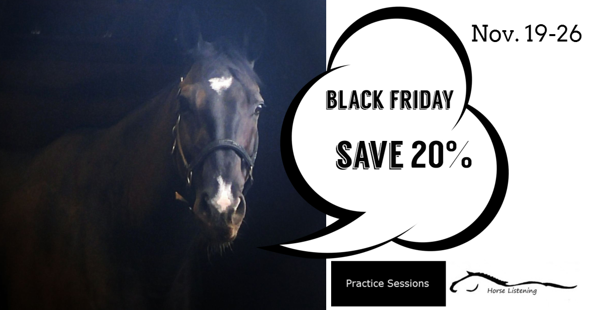 Practice Sessions Black Friday Sale Starts Now!