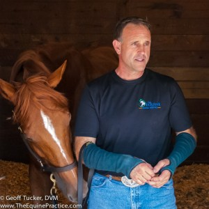 Geoff Tucker, DVM - Founder of Horsemanship Dentistry and The Equine Practice and a Cornell Veterinarian
