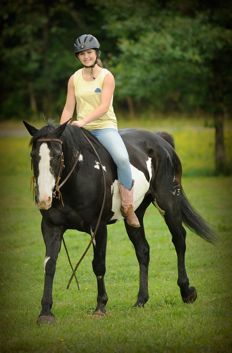 Titan  Horse of My Dreams