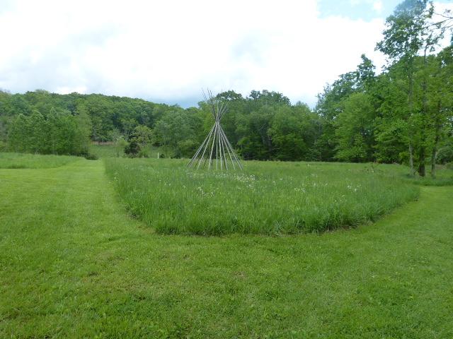 Hope Springs Institute Meadow in May