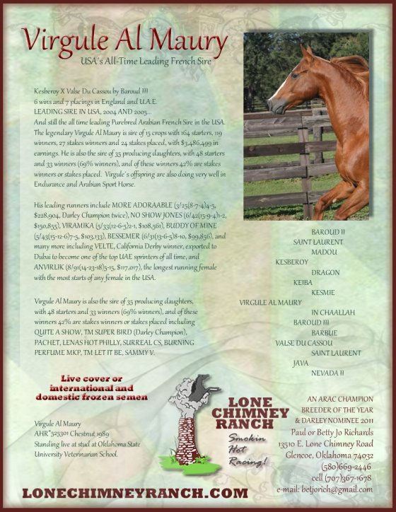 LoneChimneyRanch_pg2
