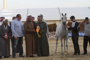 D'aajaa Al Naif win-7464