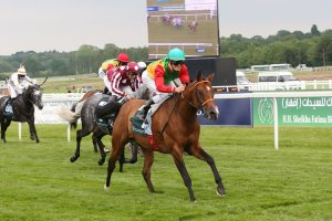 Djet Taouy wins at Newbury 2014