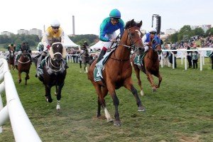 Athlete Del Sol winning Zayed Cup