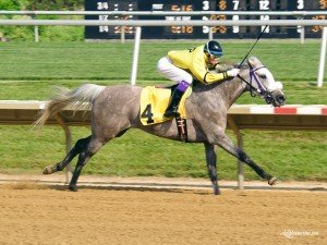 Taylors Touchof Class winning at Delaware Park on 5/30/15