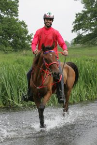 80km winner at Windsor Park photo by Gilly Wheeler