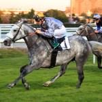 Khataab winning Zayed Cup