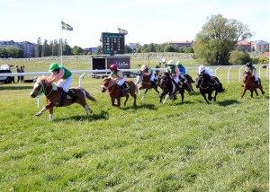 Ponies race