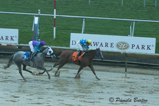 Ivory Shores chased home by Last Call MHF