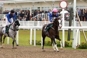 Wathba Stallions 0-85 Handicap Stakes