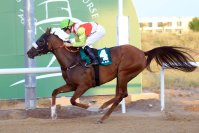 More Hope wins Wathba Stallions Cup