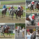 Lingfield Race 9 September