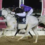 RAQEE winner of THE LATE RASHID MUBARAK AL SHAFI CUP