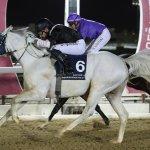RAQEE winner of THE LATE RASHID MUBARAK AL SHAFI CUP