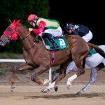 Duc de Faust win November 2019 Al Ain