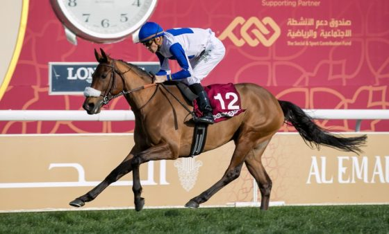 Lady Princess, Winner of HH THE AMIR SILVER SWORD