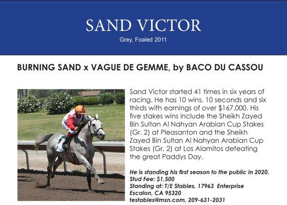 Sand Victor