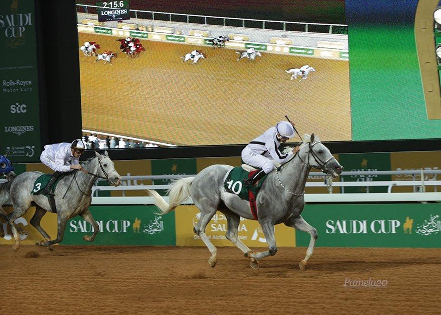 Tallab Al Khalidiah, winner of Obaiya Arabian Cup, Riyadh, 29 February. Photo Pamela Burton