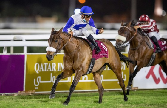 Lady Princess, winner of Qatar Derby Gr2 PA_-1.jpg