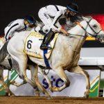 Mubasher Al Khalediah