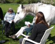 Horses Voice Introductory Workshop