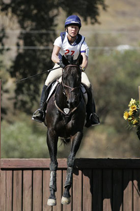 Chummin, pictured here with rider Lisa Peecook, collapsed and died between jumps on a US cross country late last year.