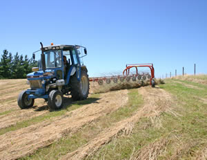 The hay is raked in 30deg heat for a final couple of hours drying before baling.