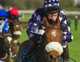 A hurdle race is being held at Cheltenham next month for Pony Racing graduates.