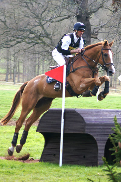 Andrew Nicholson (NZ) and Nereo (2nd, Advanced section L)