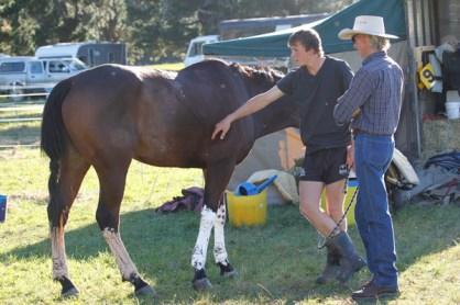 NZ-endurance-champs8707