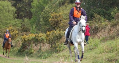 David Yeoman on Marlouf de Norvavre SILVER Saxon Trophy, Top Man, 100 mile Cup