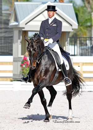 """David Marcus riding Chrevi's Capital won the Grand Prix and Grand Prix Special at the CDI3* Canada Classic held May 18-20 in Burlington, Ontario."""" Photo Credit – Sue Stickle, www.susanjstickle.com"""