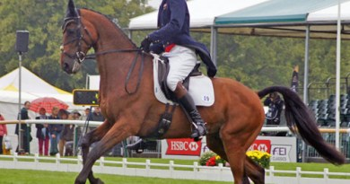 Flying change from Seacookie for William Fox-Pitt (GBR).