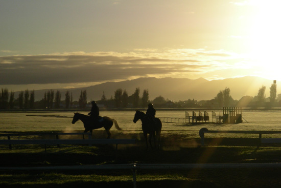 What are the short- and long-term health consequences of being a jockey in Britain?