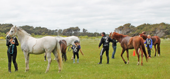 Most riders are their own strappers, here, horses are prepared for vetting. At front is Lynne McKenzie and JA Khudos (30).