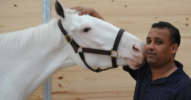 Lady Valentine with her track rider at Gulfstream Park.