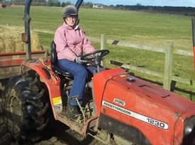 The stolen compact Massey Ferguson tractor.