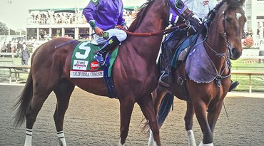 California Chrome on the day of his Kentucky Derby win. Photo: Bill Brine/Wikipedia