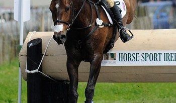 Britain's Izzy Taylor and Allercombe Ellie lead the CCI*** at Tattersalls after Saturday's cross-country.