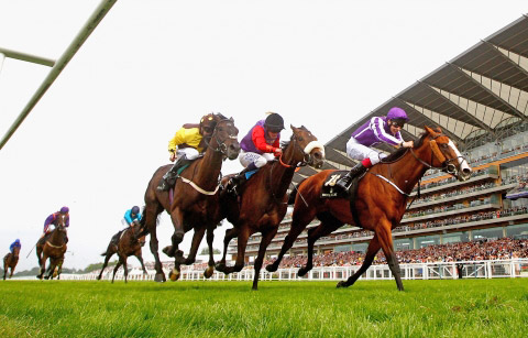 Leading Light gets the better of the Queen's Estimate, center, and Missunited, in the Ascot Gold Cup in June.