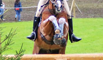 Andrew Nicholson and Nereo, who are in fifth place going into the final jumping phase.
