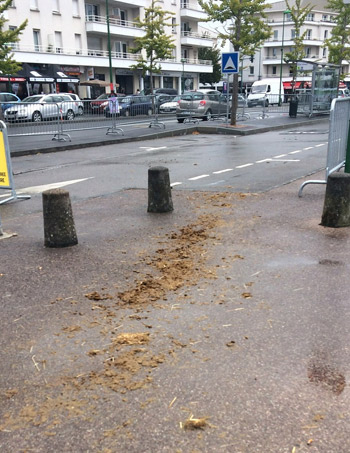 No horses in sight on the streets of Caen, but we're pretty sure they were here.